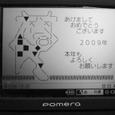 2008123101_2